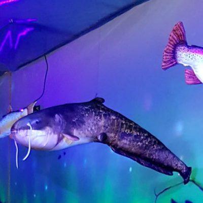 krzemienna_muzeum_zlotej_rybki_5