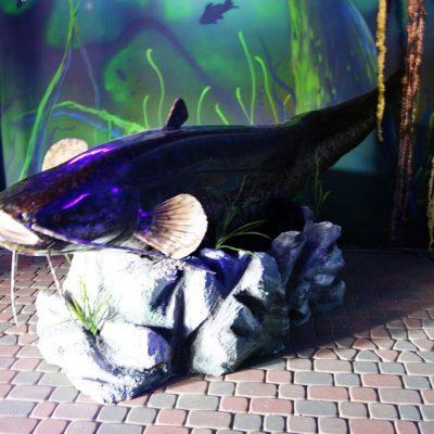 krzemienna_muzeum_zlotej_rybki_7